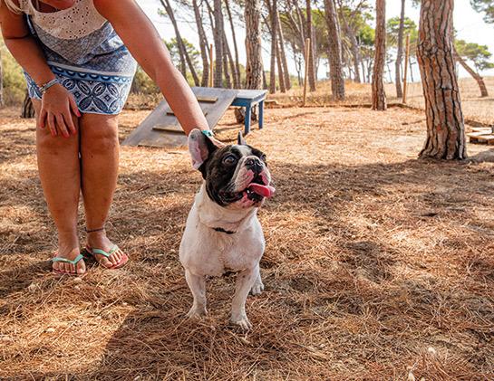 Villaggio Dog Friendly Toscana